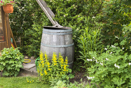 Regentonne im Garten, Regentonne anschließen